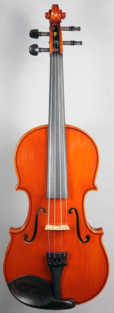 Century Strings V120S Violin Outfit - New